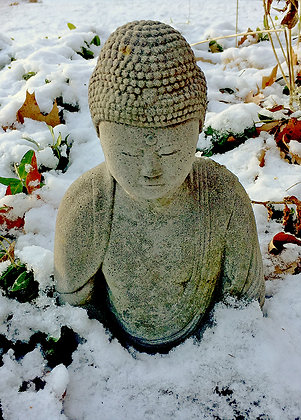 Stone Buddha surrounded by myrtle leaves and snow