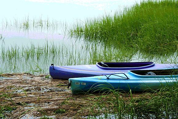 Blue and purple kayaks at the edge of a salt marsh in Wellfleet