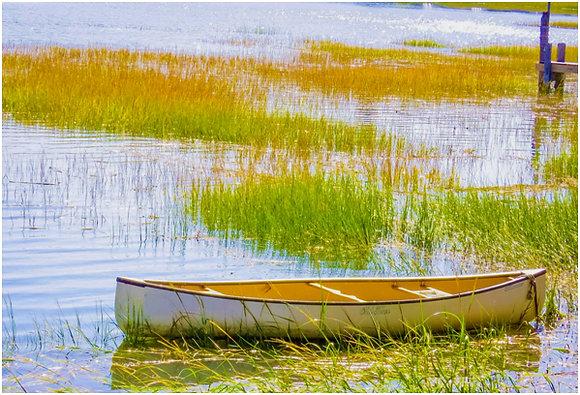 White and brown canoe in a salt marsh