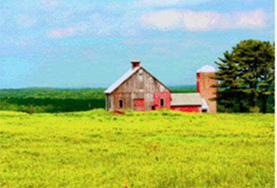 Rose Heritage Barn