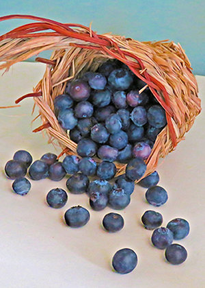 A small basket of blueberries