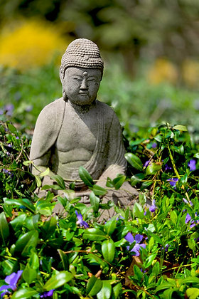 Buddha statue, blooming yellow forsythia bushes, and purple myrtle flowers