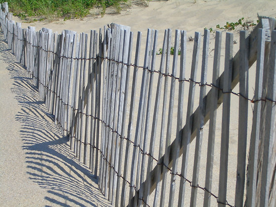 Interesting shadows beside a wood-slat sand fence