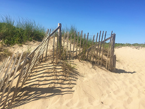 Wood slat sand fence on beach with deep blue sky