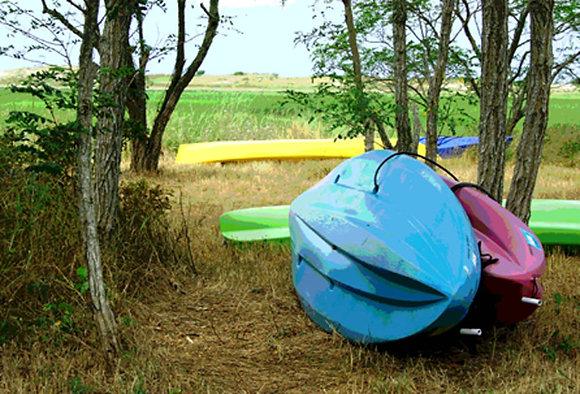 Blue, purple, and green kayaks and a yellow canoe beside a salt marsh