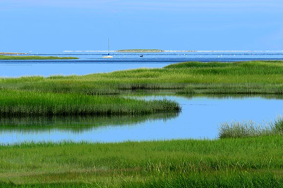 Blackfish Creek, South Wellfleet, Mass.