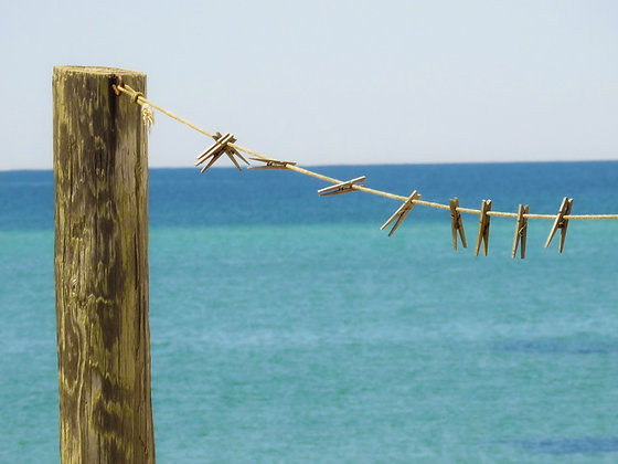 Wooden clothespins on a clothesline, with Cape Cod Bay in background