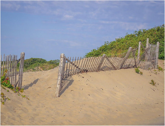 Wood slate sand fence on sand dune
