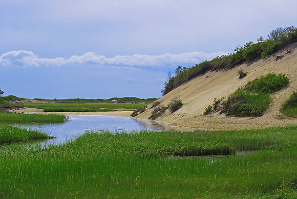 PROVINCELANDS DUNE AND MARSH