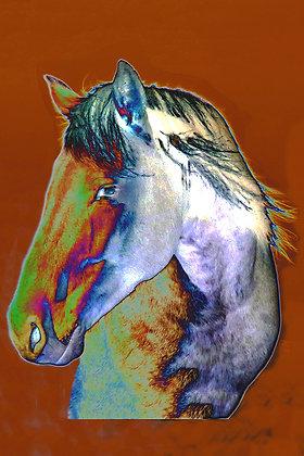 Stylized horse's head