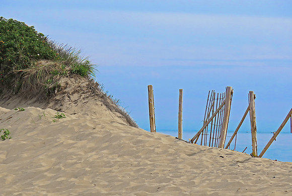 Broken sand fence beside dune at Herring Cove, Provincetown