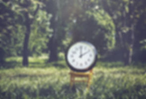 clock forest.jpg