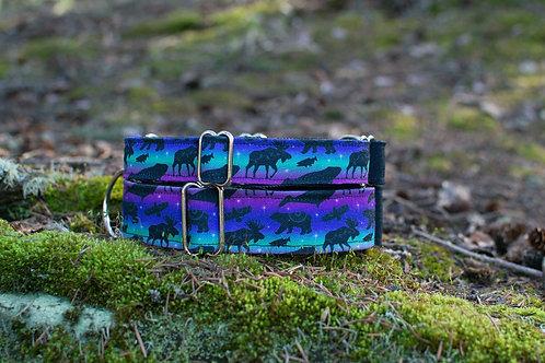 Northern Wilderness Eco Collar
