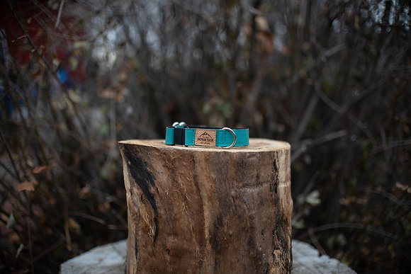 Sea Blue Cork Cat Collar