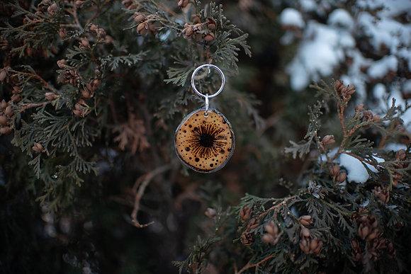 Chrysanthemum Tag