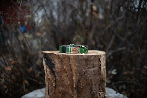 Kelly green Cork Cat Collar