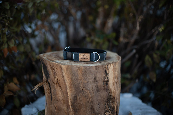 Moon Phases Eco Canvas Cat Collar