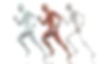 distúrbios-osteomoleculares-fisioterapeu
