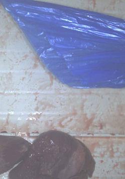 blue plastic inspection