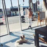 Retail locations for SandSilkSky Shop Dream Catchers