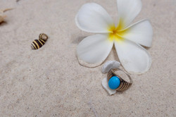 Turquoise in Sterling Silver 92.5%
