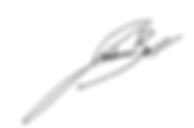 Joshua L Bell Signature.png