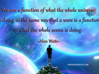 You Are A Function Of The Universe