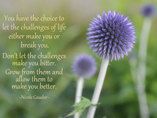 Grow From Challenges