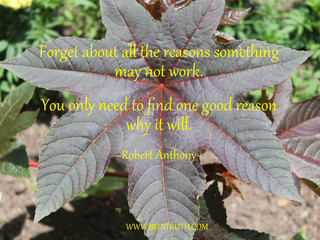 Find A Good Reason!