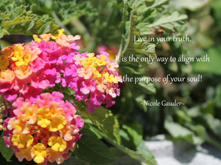 Live In Your Truth!
