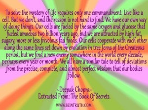 Our Cells Follow Our Mind And Vibrational Frequency.