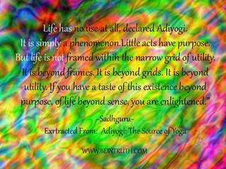 Life Has No Use...
