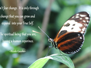 Change Is Essential For Your Growth.