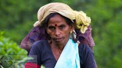 161113_Sri Lanka_MG_7236