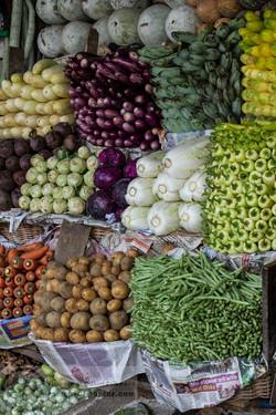 131113_Sri Lanka_MG_8635