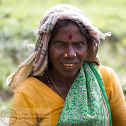 141113_Sri Lanka_MG_6813