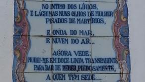 #patrocinado   Pormenores em Amoreira