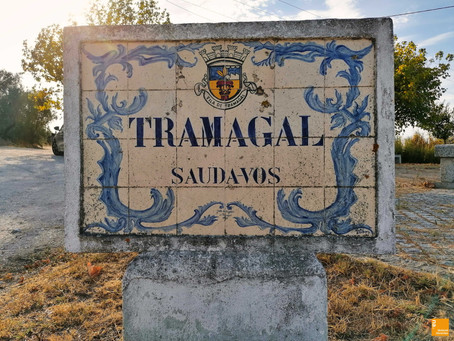 Olhares | Tramagal