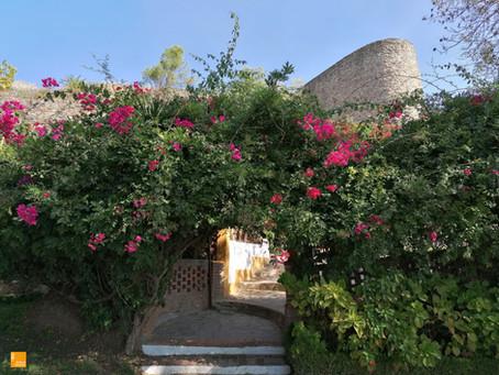 E que tal uma visita ao Jardim do Castelo?
