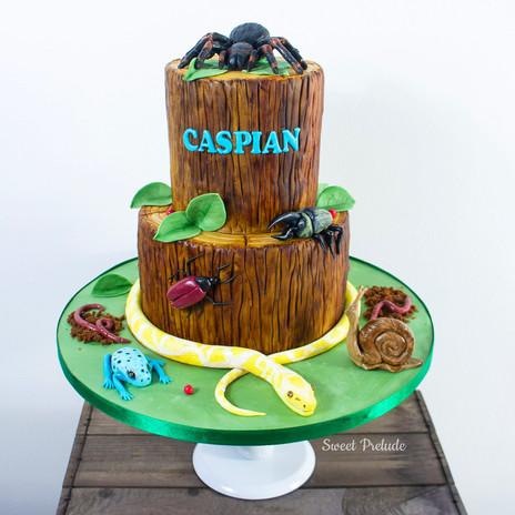Bugs cake.JPG
