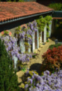 Gite Wisteria - holidays in the south of France