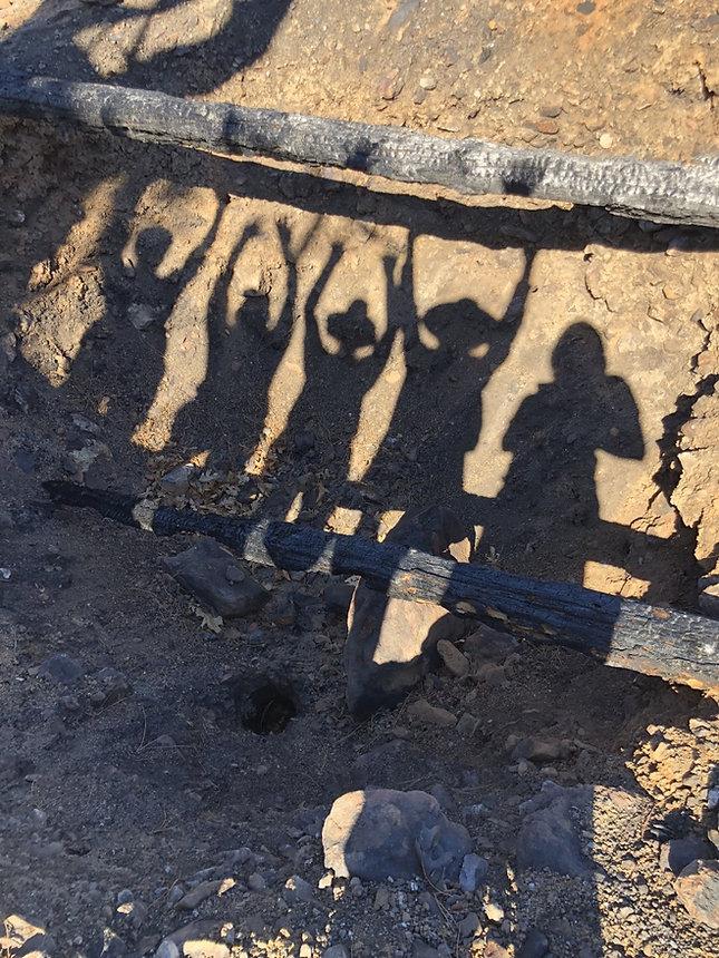 Wolfpack shadow photo.jpg