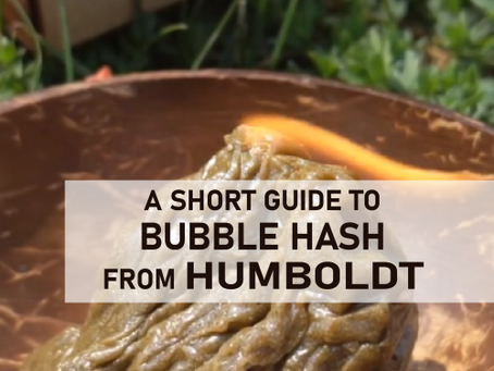 A short guide to bubble hash from Humboldt