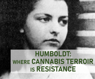 Humboldt: Where Cannabis Terroir is Resistance