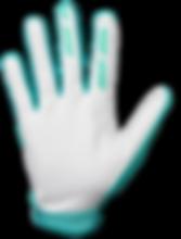 Annex_Dot_Aqua_Palm-2.png