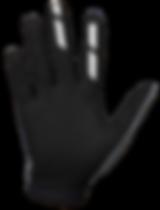 Annex_Dot_Raider_Palm-2.png
