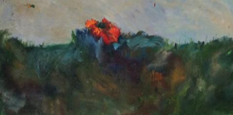 P7 – Lone Flower