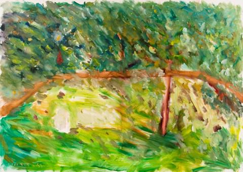 P29 – In Yael's Garden