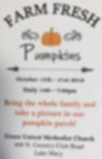 Pumkin Patch.JPG