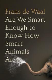 Are We Smart.jpeg